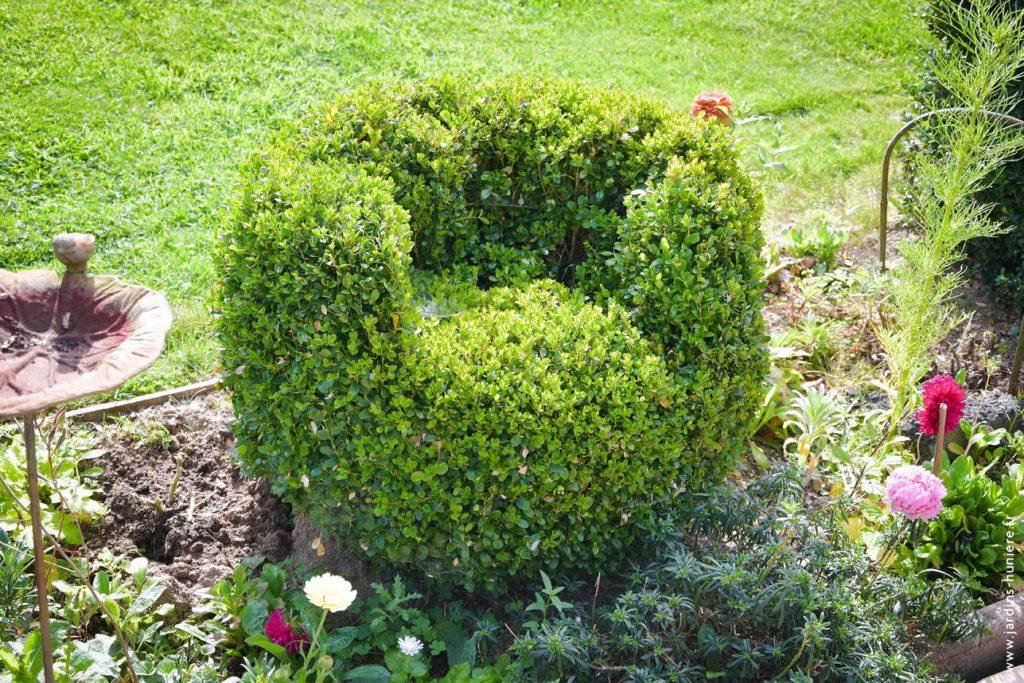 jardin, nature, normandie