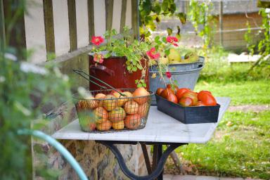 les pommes et le tourisme à lisieux, calvados, normandie